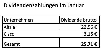 Grafik meiner Dividenden im Januar